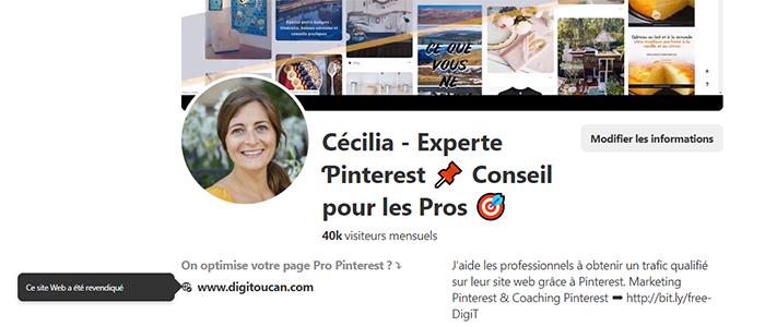 Exemple de compte Pinterest Professionnel