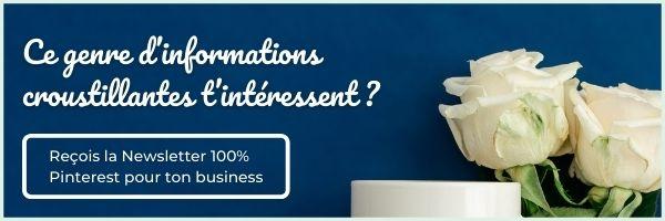 La Newsletter Pinterest Pour Ton Business 1