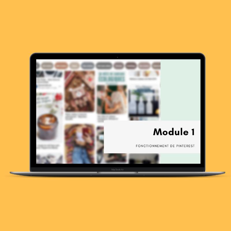 Module Pinterest E Commerce